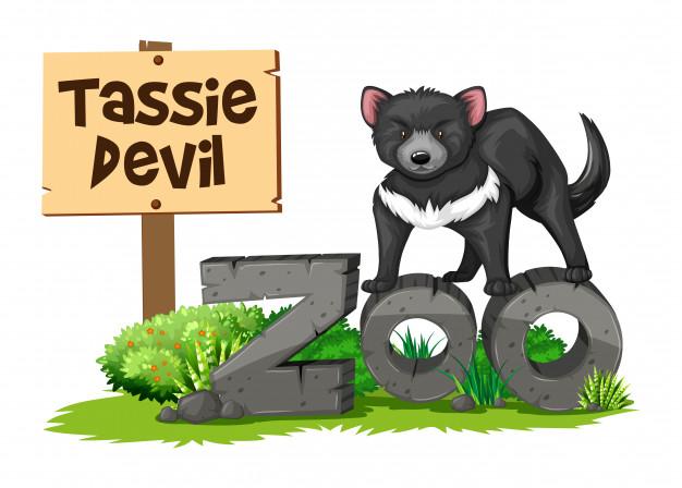 626x448 Tasmanian Devil In The Zoo Vector Free Download