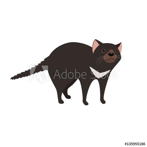 500x500 Tasmanian Devil With Black Fur Vector Illustration