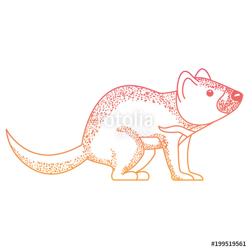 500x500 Wild Tasmanian Devil Creature Stock Image And Royalty Free Vector