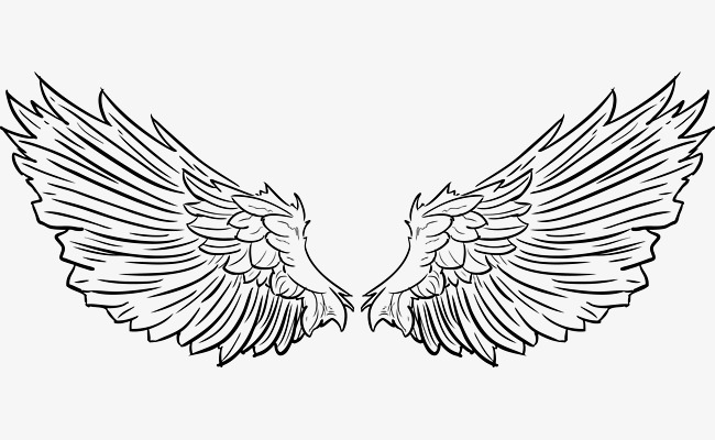 650x400 Vector Tattoo Feathered Wings With Short Feathers, Tattoo Vector