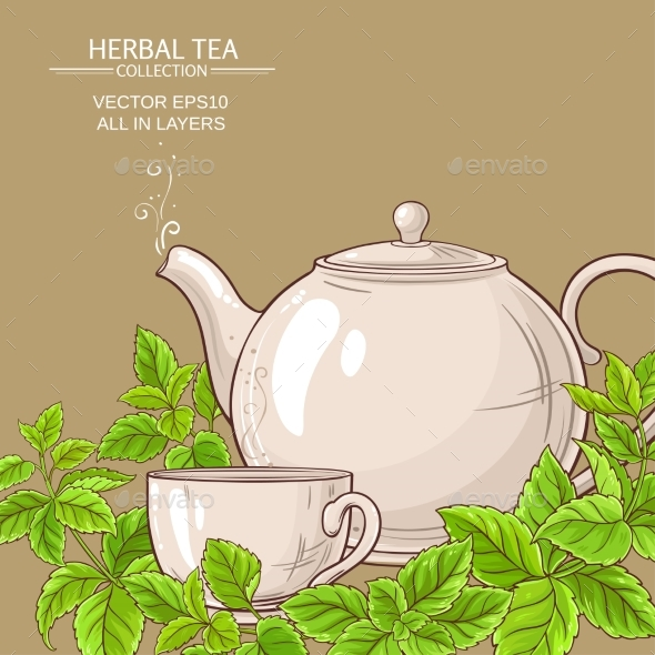 590x590 Melissa Tea Vector Background By Cuttlefish84 Graphicriver