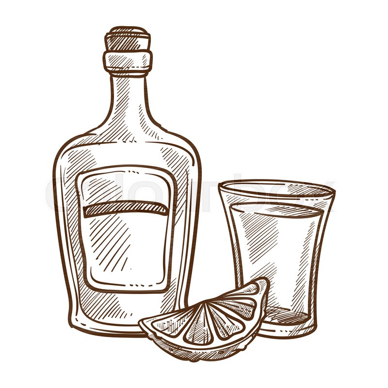 800x800 Tequila Bottle And Glass With Lime Slice Monochrome Sketch Outline