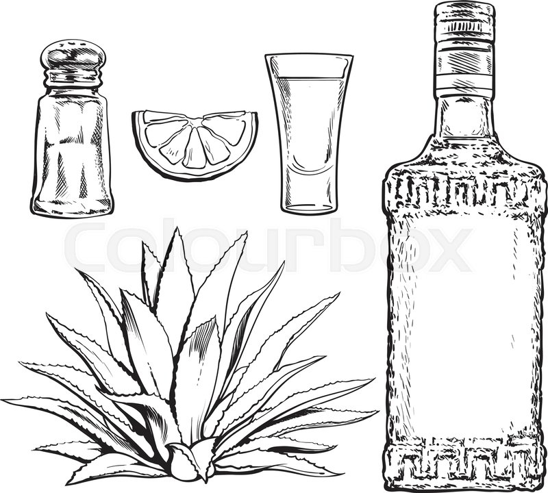 800x720 Set Black And White Of Tequila Bottle, Shot, Salt Mill, Agave And