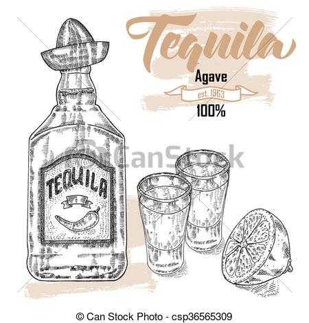 450x470 Bottle Of Tequila Drink. Hand Drawn Two Glasses Of Tequila