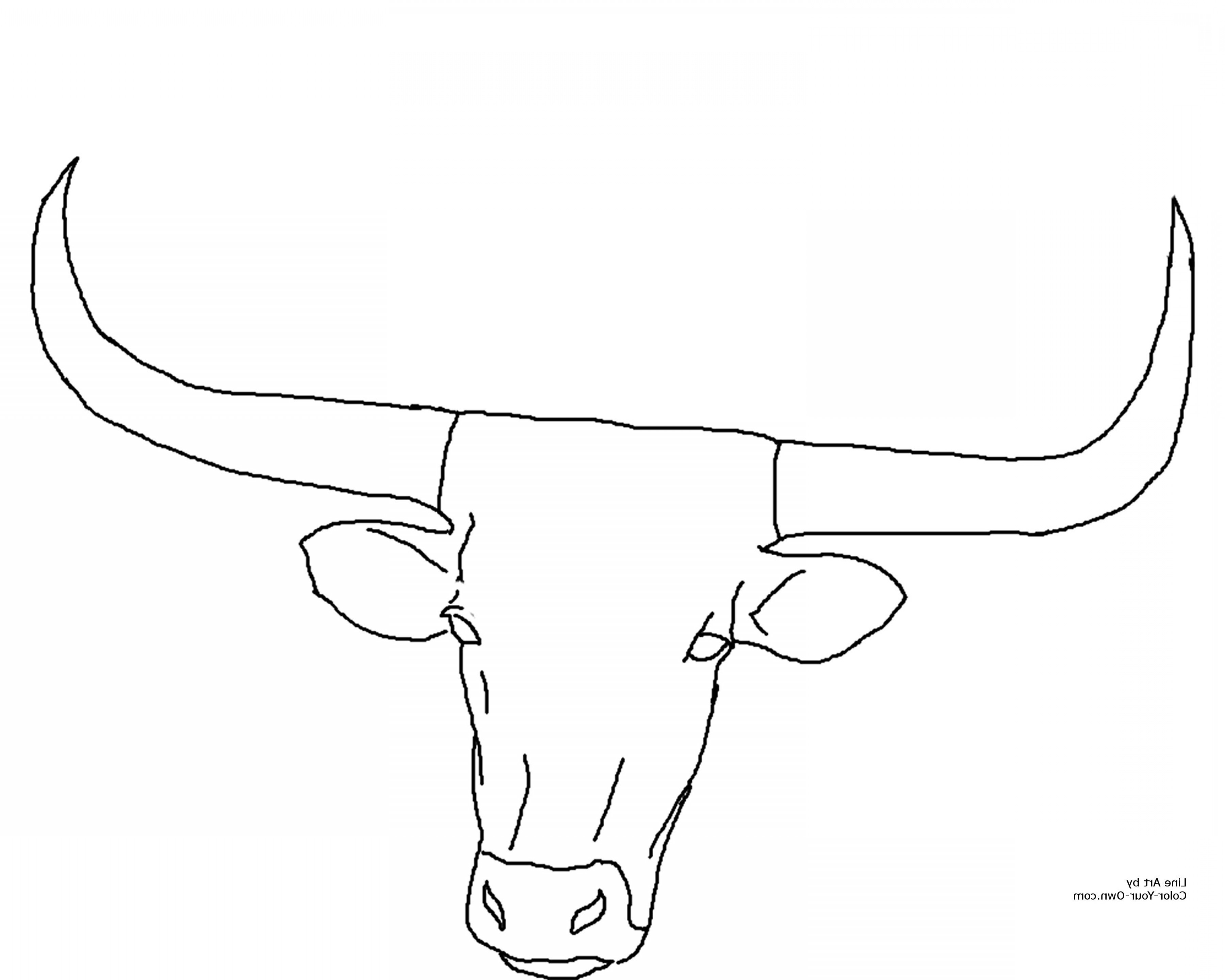 3600x2880 Mainstream Texas Tech Coloring Pages Vector Art Sohadacouri