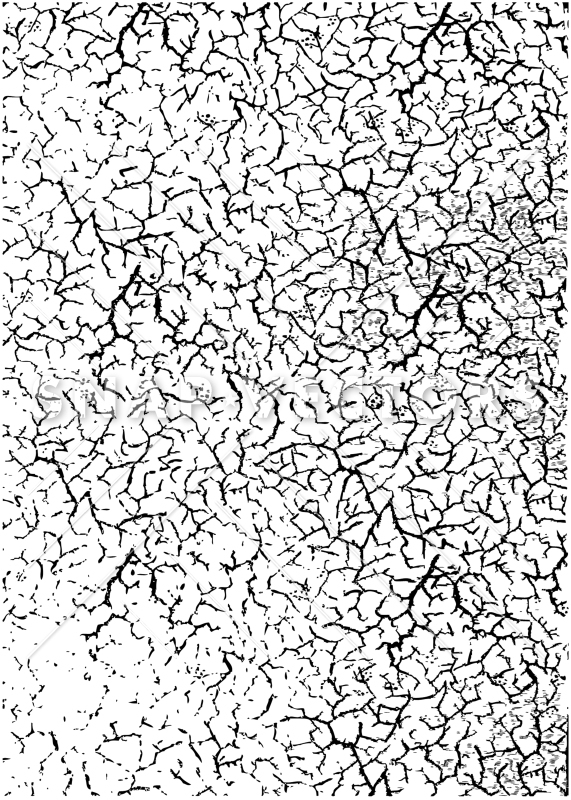 571x800 Vector Cracked Dirt And Grunge Texture