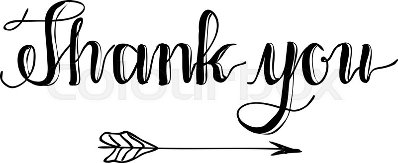 800x328 Thank You Hand Written Words Calligraphy Lettering Stock Vector