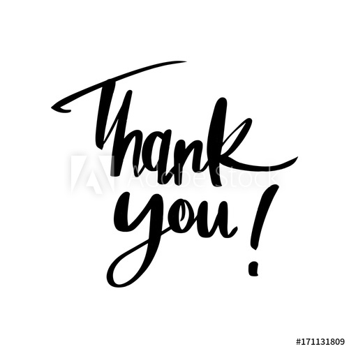 500x500 Thank You Lettering Calligraphy, Vector Illustration Brush Painted