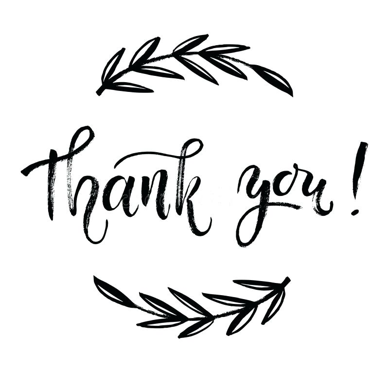 800x800 Download Thank You Card Vector Template Hand Lettering Brush Pen
