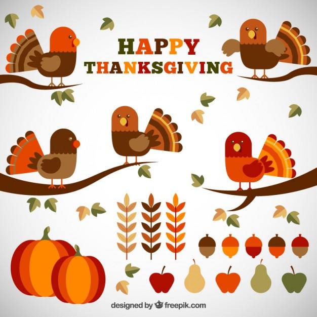 626x626 Cute Elements Of Thanksgiving In Flat Design Vector Premium Download