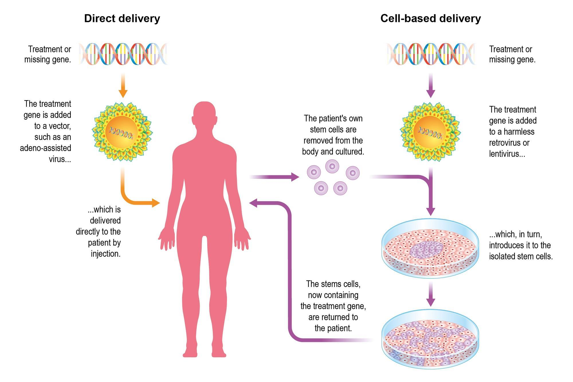 2000x1334 Delivering Gene Therapy Feature Chemistry World