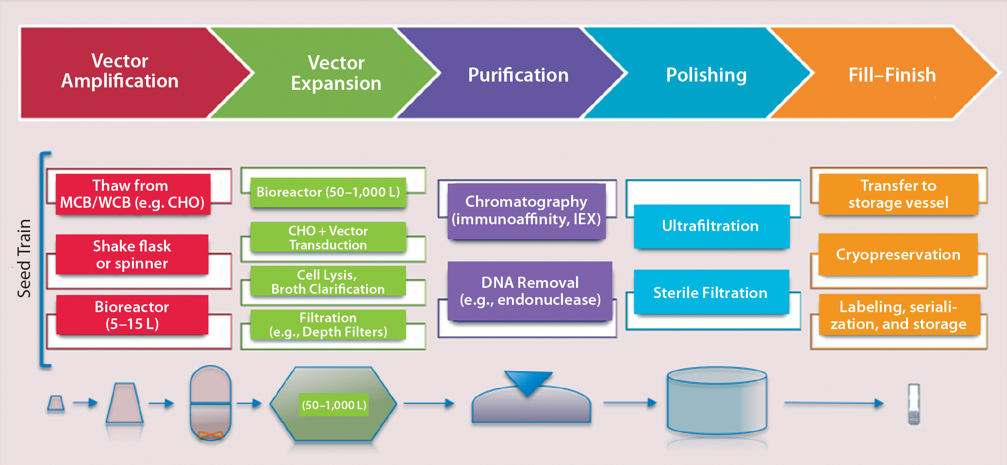 2075x958 Emerging Platform Bioprocesses For Viral Vectors And Gene