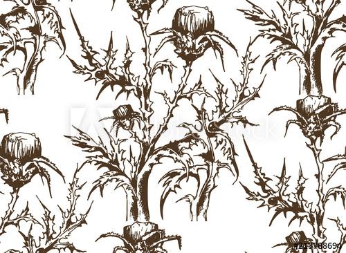 500x366 Pattern Of Thistle. Vector Illustration