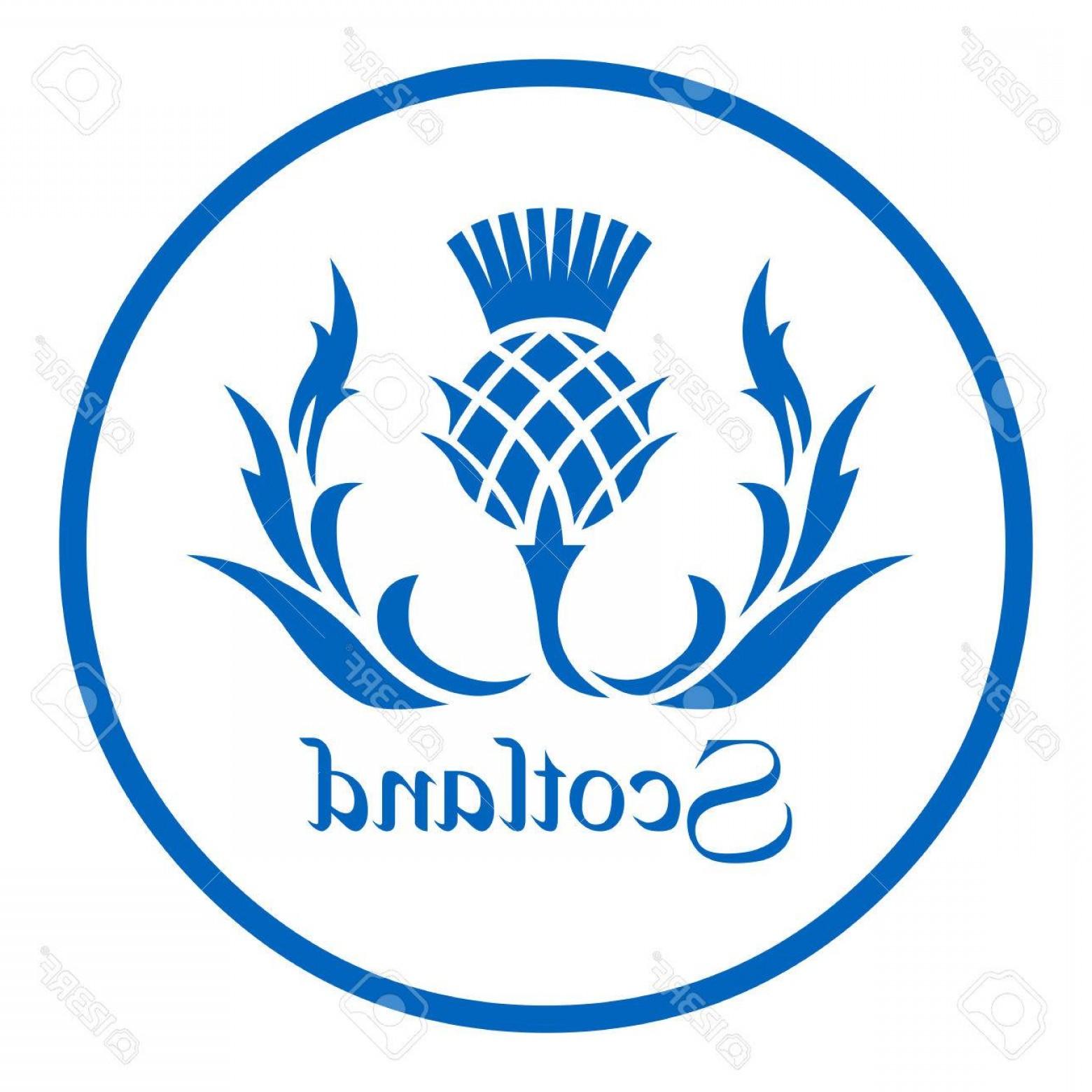 1560x1560 Photostock Vector Floral Emblem Of Scotland The Thistle Createmepink
