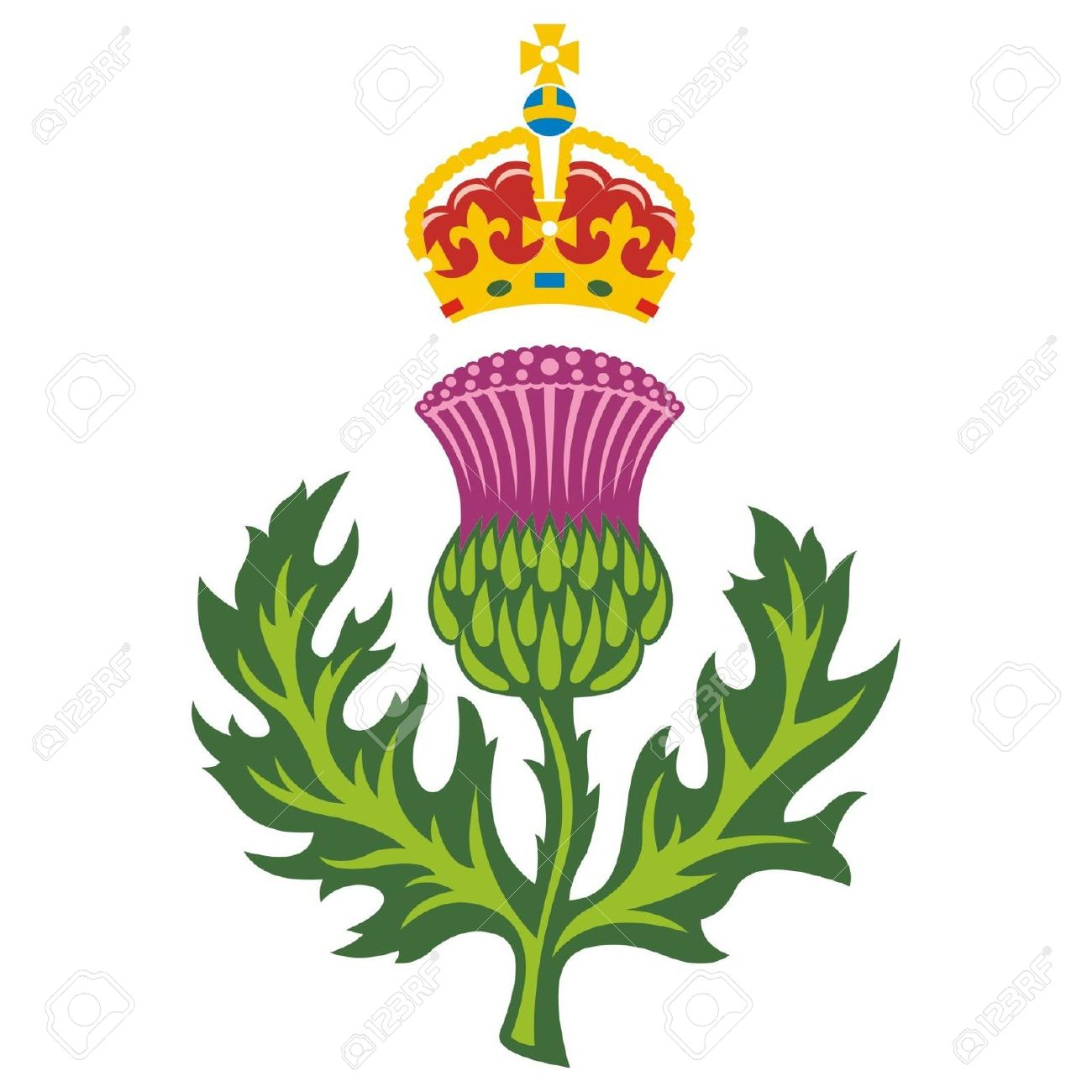 1300x1300 Collection Of Scottish Thistle Clipart High Quality, Free