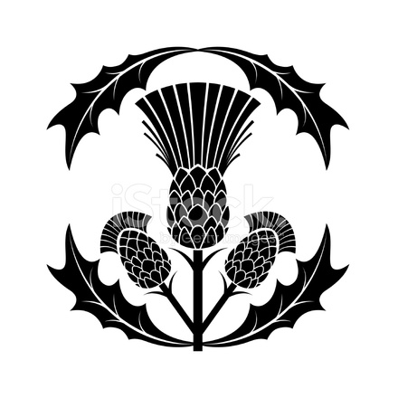 440x440 Simple Thistle Silhouette Vector Illustration Stock Vector