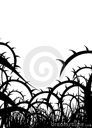 322x450 Thorns Clipart Vine