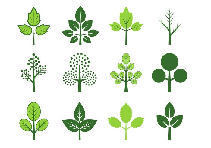 700x490 Leaves Of Three Vector Pack
