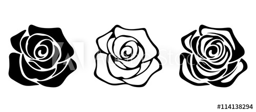 500x220 Set Of Three Vector Black Silhouettes Of Rose Flowers Isolated On
