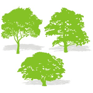 300x300 Three Tree Silhouettes Vector