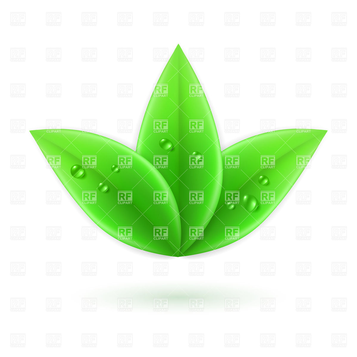 1200x1200 Three Green Leaves With Water Drops Vector Image Vector Artwork