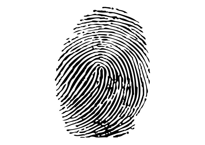 800x566 Vector Fingerprint