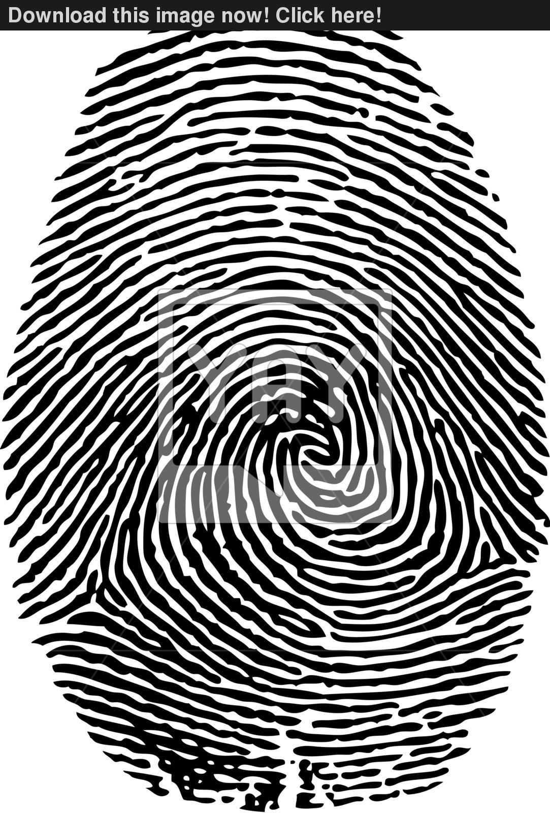 1083x1600 Fingerprint Vector Vector