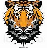 160x163 Tiger Face Vector. Tiger Eyes Vector Clipart Panda