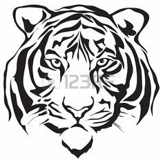236x236 Tiger Head Outline Tiger Eyes Black And White Clipart Panda