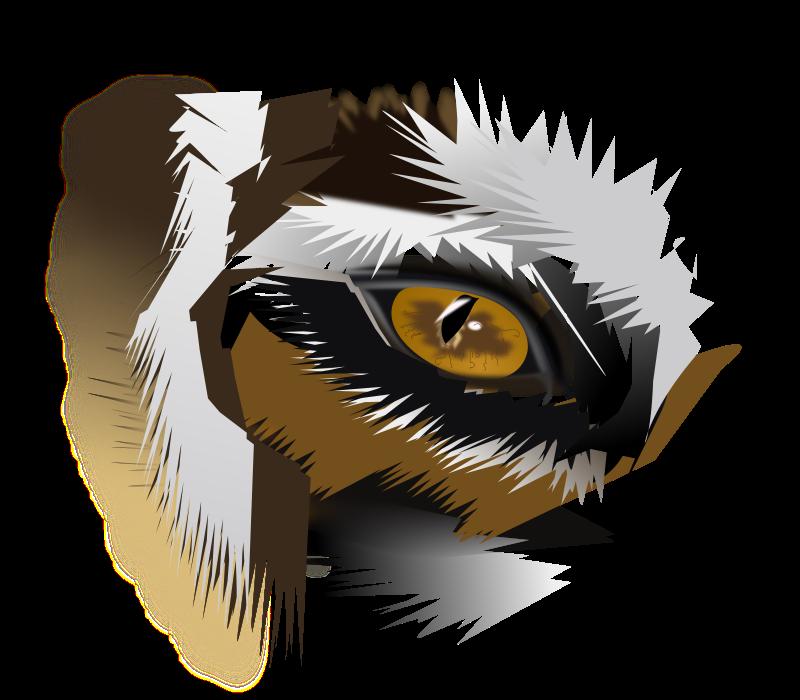 800x700 Tiger Clipart Tiger Eyes