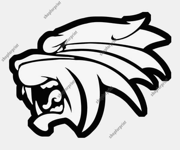 600x500 Tiger Face Vector Image