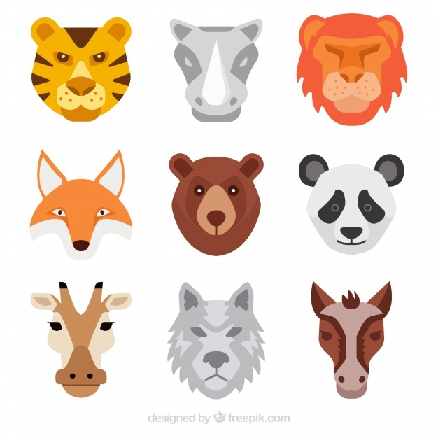 626x626 Tiger Face Vectors, Photos And Psd Files Free Download