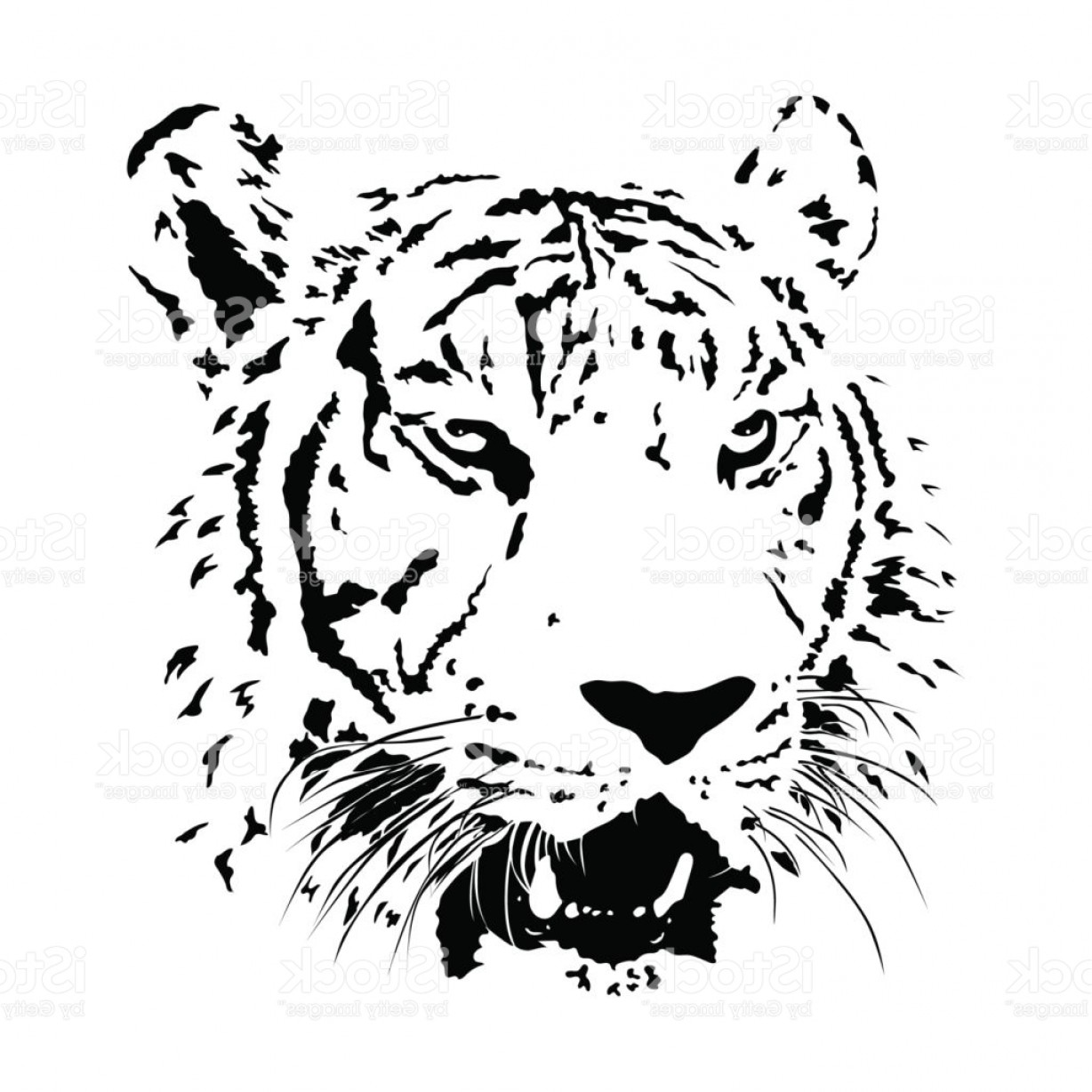 1228x1228 Black And White Bengal Tiger Isolated Animal Face Vector