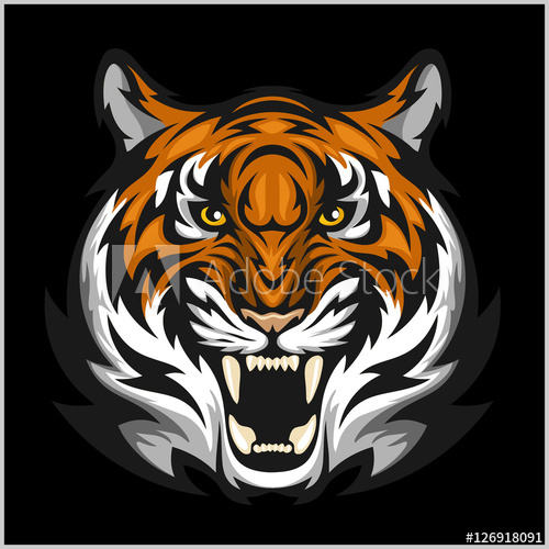 500x500 Tigers Face. Vector Illustration Of A Tiger Head.