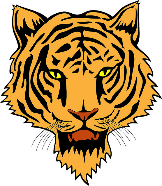 556x640 Hd Animals Tiger Face Vector
