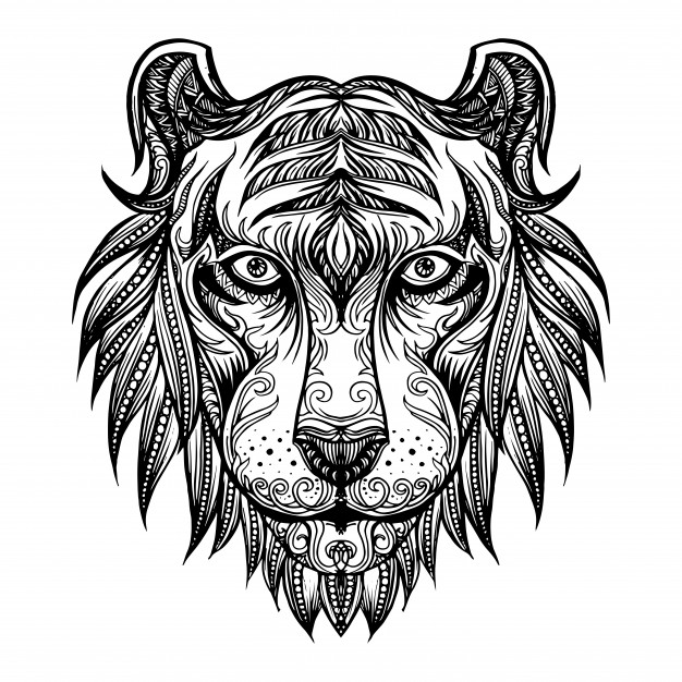 626x626 Hand Drawn Doodle Tiger Face Vector Premium Download