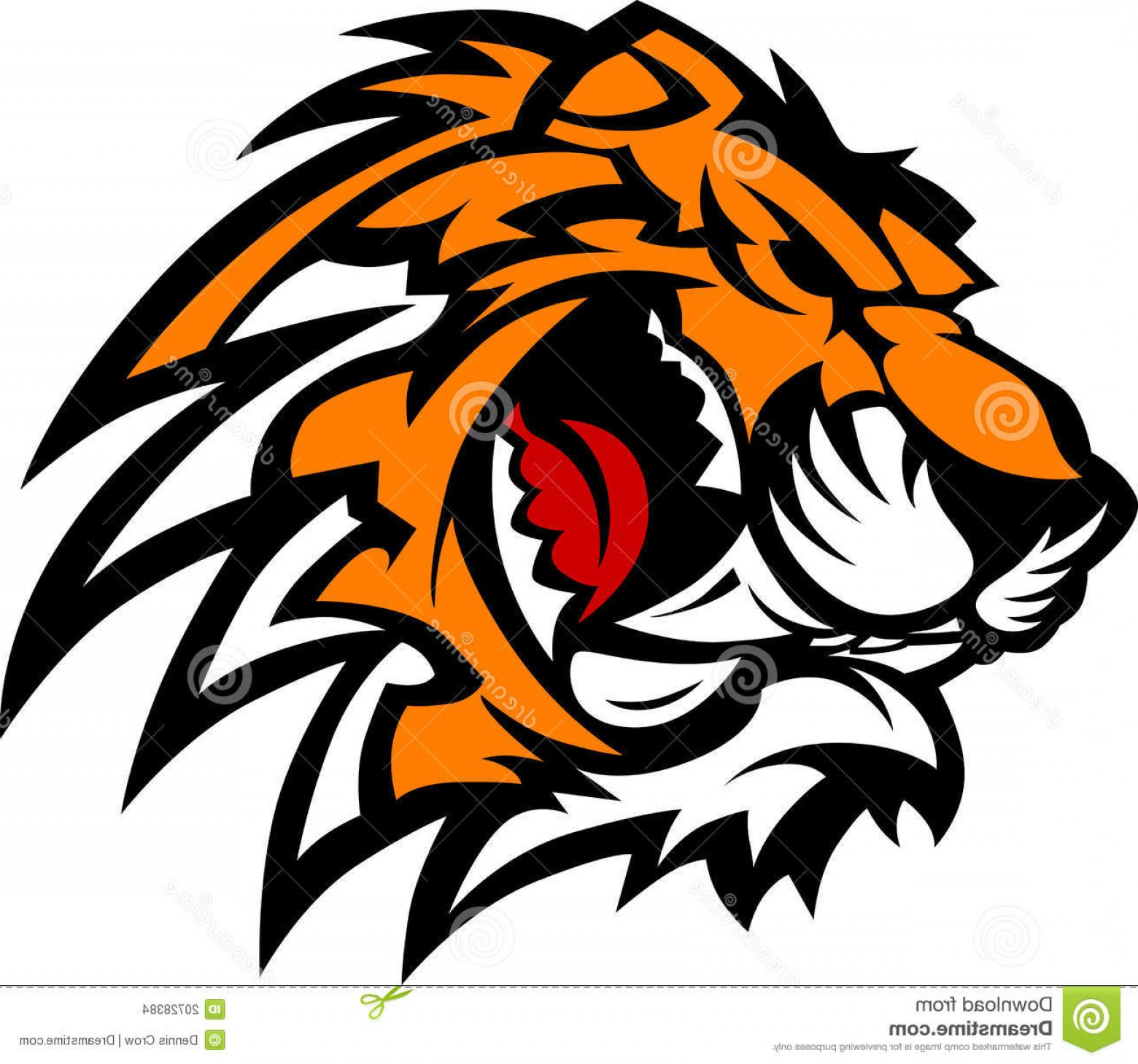 1560x1459 Stock Images Tiger Mascot Vector Graphic Image Shopatcloth
