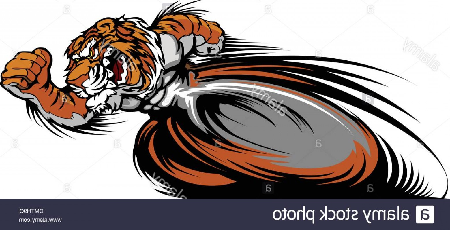 1560x799 Stock Photo Racing Tiger Mascot Graphic Vector Image Geekchicpro