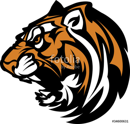 500x477 Tiger Mascot Graphic Stock Image And Royalty Free Vector Files On