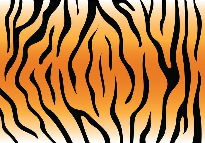 700x490 Tiger Free Vector Art