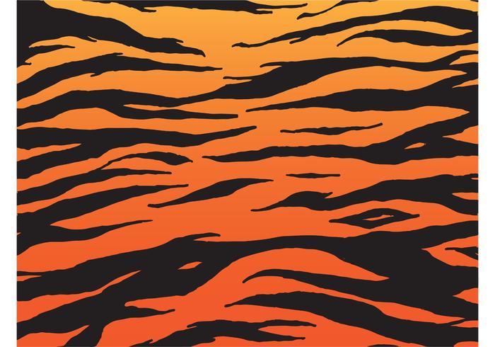 700x490 Tiger Pattern Vector Free Vector Art