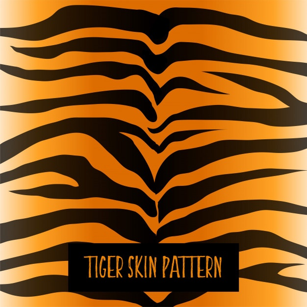 626x626 Tiger Stripes Vectors, Photos And Psd Files Free Download