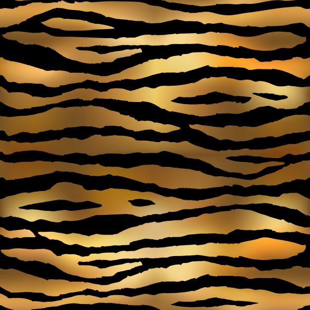 626x626 Tiger Pattern Vector Premium Download