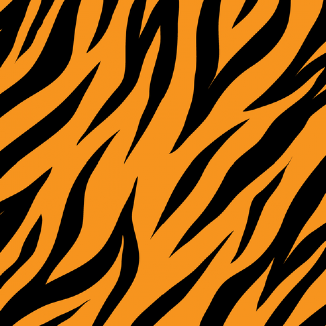 650x650 Tiger Stripes Pattern Vector