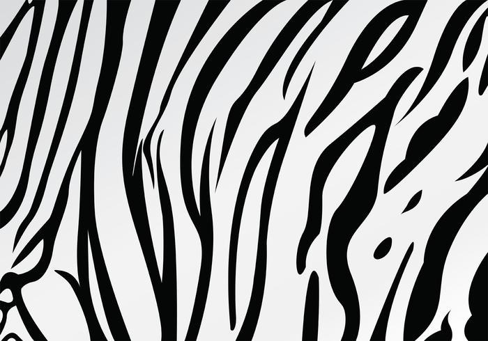 700x490 White Tiger Stripe Pattern Vector
