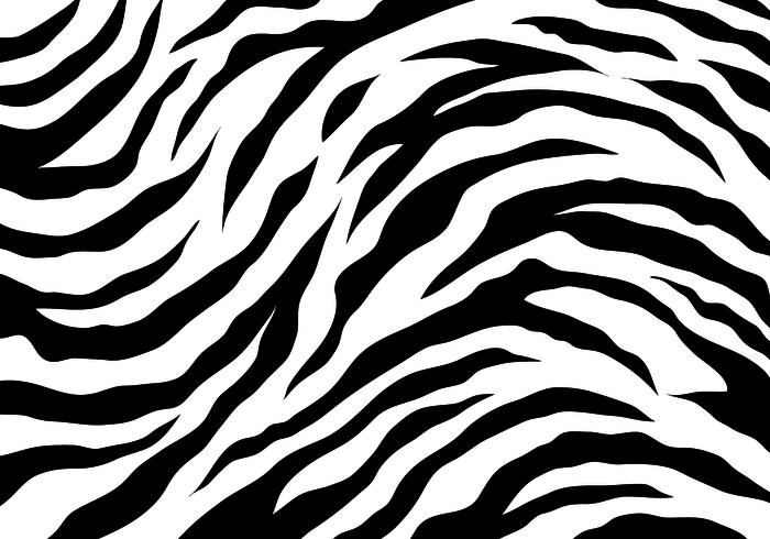 700x490 White Tiger Stripes