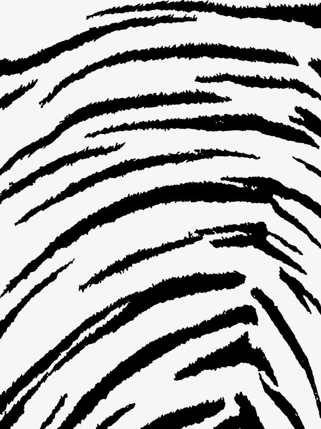 650x868 Fashion Tiger Pattern Pattern, Fashion Vector, Tiger Vector