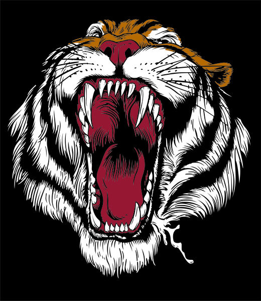520x600 Tiger Vector Cdr File Free Vector In Coreldraw Cdr ( .cdr ) Format