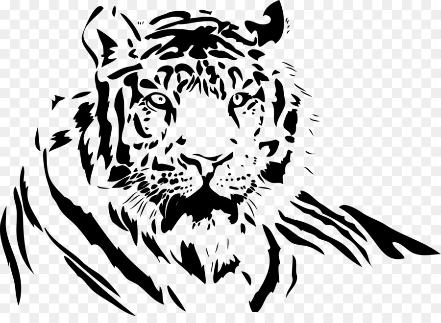 900x660 Download White Tiger Drawing Clip Art Tiger Vector