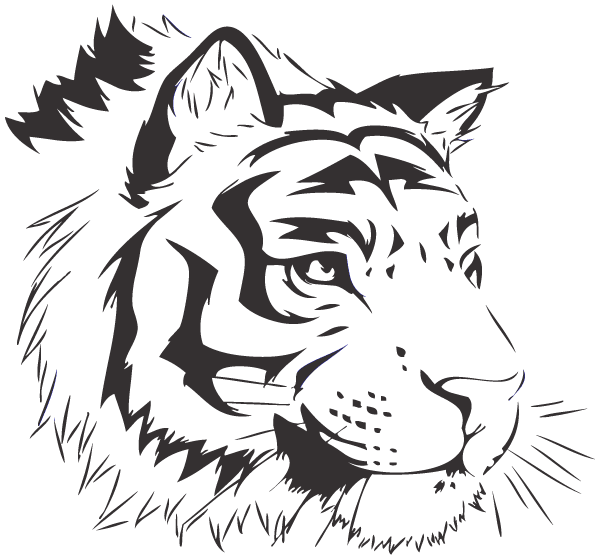 600x560 Free Bengal Tiger Vector Image Free Psd Files, Vectors Amp Graphics